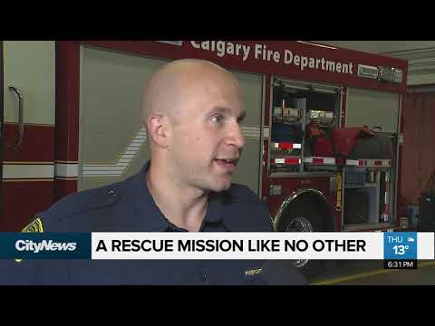 Calgary firefighter credited with elevator rescue