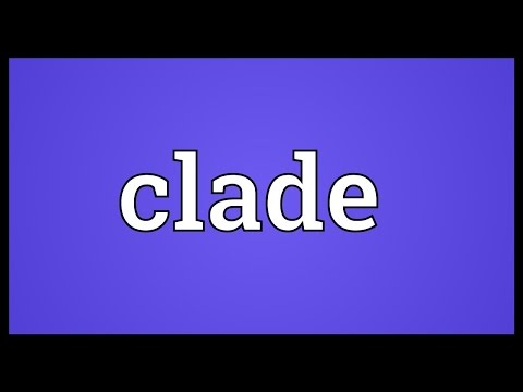 Clade Meaning