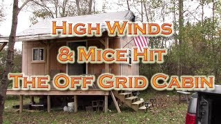 Baixar Quick Update High Winds & Mice @ the Off Grid Cabin