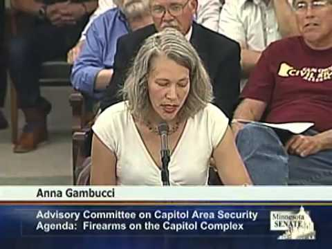Public Comments On Gun Restrictions For MN Capitol - Full Hearing