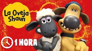 Español Capitulos Completos - La Oveja Shaun (Temporada 1)