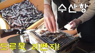 수산항/남애항/스텔스차박/도루묵/섭국/섭죽/그랜드스타렉…