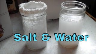 Simple Salt and Water Spell