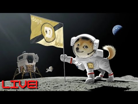 🔴[LIVE] MARKET OPEN: AMC, TSLA, WKHS & MORE 💎🙌 || DOGE ARMY: CRYPTO BOUNCING 🚀🚀🚀