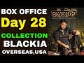 Blackia 28 Days Box office Collection | Hit Or Flop | Punjabi Movie