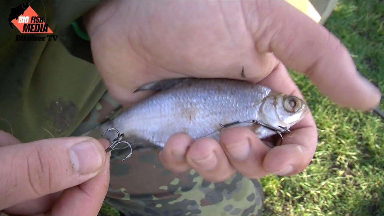 Balzer MK Hechtpose Pose zum Angeln auf Hechte Hechtschwimmer zum K/öderfischangeln Angelpose zum Hechtangeln mit K/öderfischen