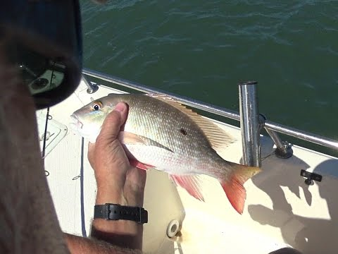 Hurricane Gone Fishing Improving