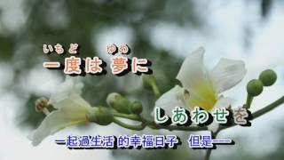 02-017  なみだ恋 *** 金嗓  41112