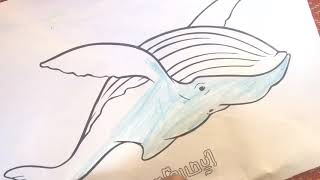 Girl painting a whale,ក្មេងស្រីផាត់ពណ៌រូបត្រីបាឡែនGirl painting a whale