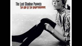 Watch Last Shadow Puppets Chamber video