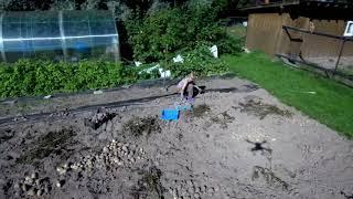 Картоха, урожай не очень,День рыбалки с Олегом Б.