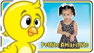 Pollito Amarillito - Canciones infantiles   Meu pintinho amarelinho Versão Espanhol