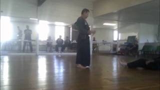 Mixed Martial Arts, 2011 Zen Do Kai/Bushi Kai grading