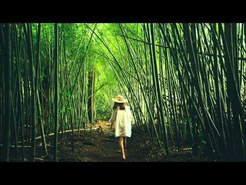Limpopo Roots Feat. Dudu - Road Of Love (Original Mix)