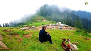 Kashmir Travel Toli Peer Road Trip Pakistan 2019