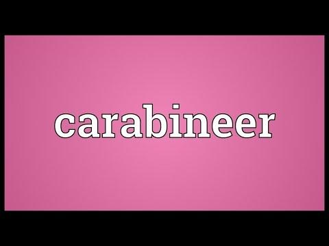 Header of carabineer