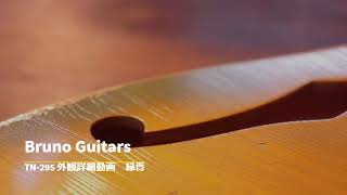 Bruno Guitars TN-295 外観詳細紹介動画