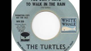 Watch Turtles You Dont Have To Walk In The Rain video
