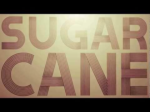 Sugarcane - Shaggy (Official Lyric Video)