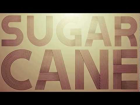Sugarcane - Shaggy (Official Lyric Video)