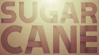 Shaggy - Sugarcane (Official Audio with Lyrics)