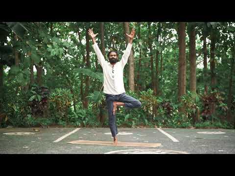 Vrikshasana - Tree Pose - Alignment