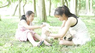 Wow Amazing Beautiful Girl Playing With Dog Smart & Funny Dog
