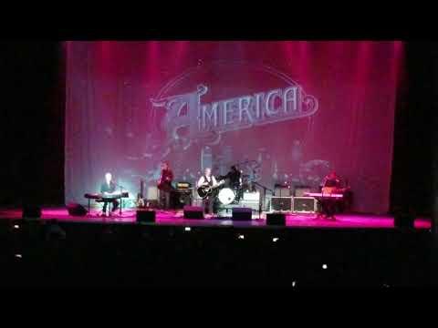 America -Daisy Jane - 12/1/18