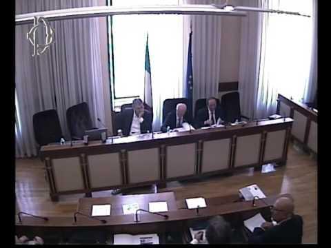 Roma - Audizione Agenzia dogane e Guardia finanza (11.07.17)