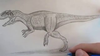 How to draw Giganotosaurus part 2.