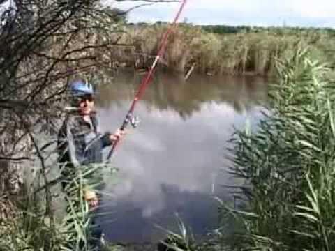Ловля Карпа на Поплавочную Удочку.смотрим и вчимся как надо ловить рыбу.