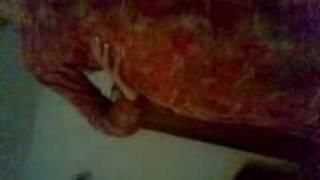 Repeat youtube video SHABNAM adnan ke wife rwp  DHOKE SAYYDEN GIRJA ROAD  SADIQ COLONY   in is room