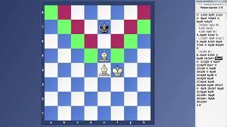 Уроки шахмат. Мат двумя слонами и мат конем и слоном.