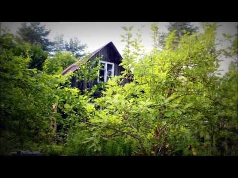 Купить дом в садоводстве . Ленинградская область