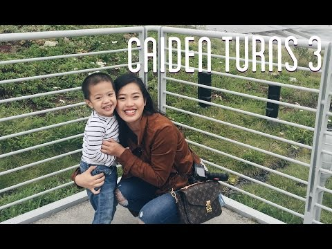 Caiden's 3rd Birthday | August and September 2016
