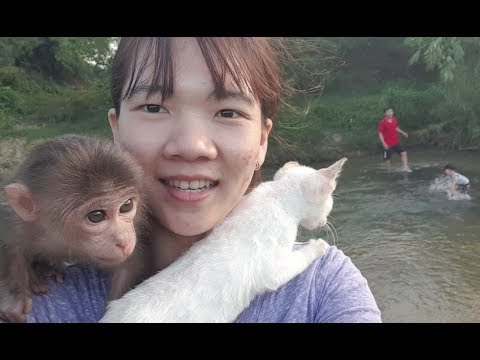Baby Monkey | Doo And Cat Miu Go On A Picnic And Play Outdoor With Family