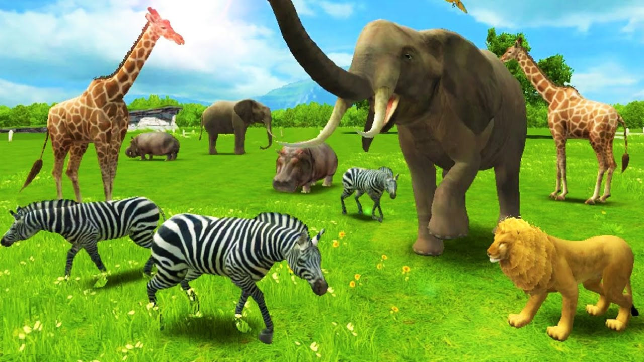 baby learn about animals have fun with real animal fun educational