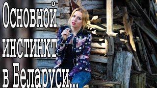Основной инстинкт. В Беларуси секса хватает.