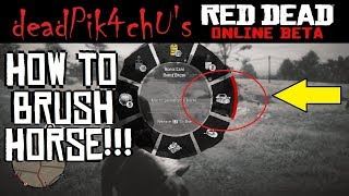 How to Brush Horse in Online??!? | deadPik4chU's Red Dead Redemption 2
