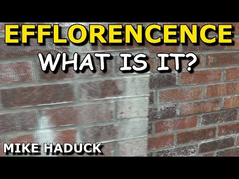 efflorescence, what is it? (Mike Haduck) commentary