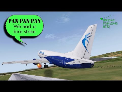 A Blue Air B733 HITS SOME BIRDS and LEFT ENGINE FAILS!