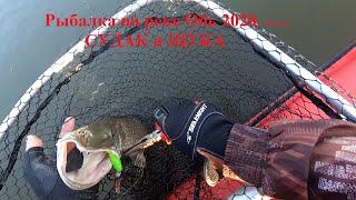 Рыбалка на реке Обь 2020 СУДАК И ЩУКА Часть 4