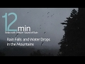 雨の音 -Rain Falls and Water Drops in the Mountains 12Min -Sleep and Relax