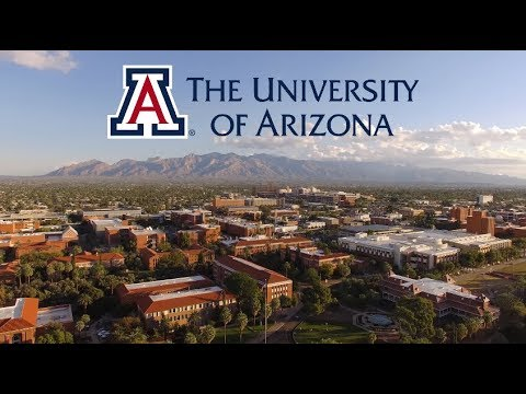 Join our University of Arizona Wildcats Family