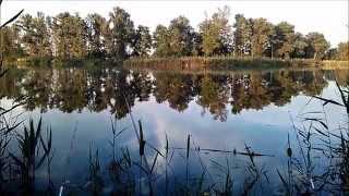 Ловим карпа Рыбалка на Кубани