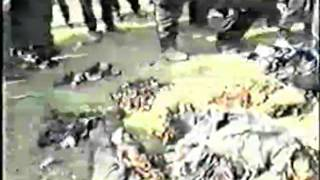Геноцид русских в Чечне