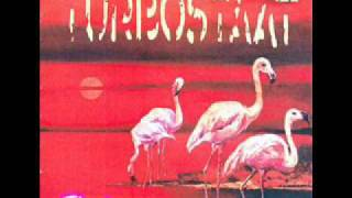 Turbostaat - Flamingo - 01 - Drei Ecken, ein Elvers