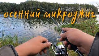 Микроджиг в сентябре Ловля окуня на спиннинг осенью Рыбалка на озере