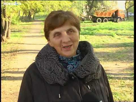 Новости Новокузнецка 8 октября