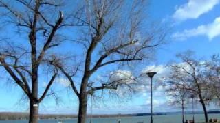 Wolfgang Amadeus Mozart Piano Concerto No 21 Andante